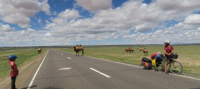 Traversée d'un petit bout du Gobi en photos